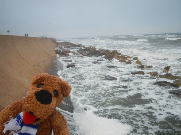 The Nittany Lion at the Galveston seawall