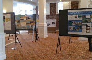A peek into the poster room at the Penrose/Chapman conference