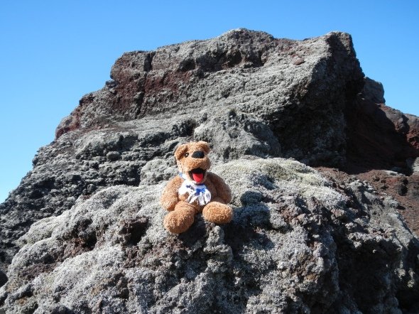The Nittany Lion hanging out on a lava field.  I'm trying my hardest to get my new friends/colleagues to realize that he is a mountain lion, not a bear!