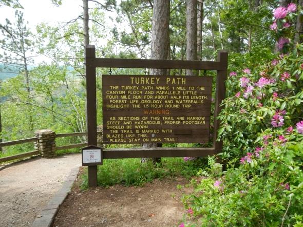 Until we meet again, Turkey Path Trail at Pine Creek Gorge!