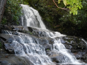 Laurel Falls, one of over 40 waterfalls in the park!