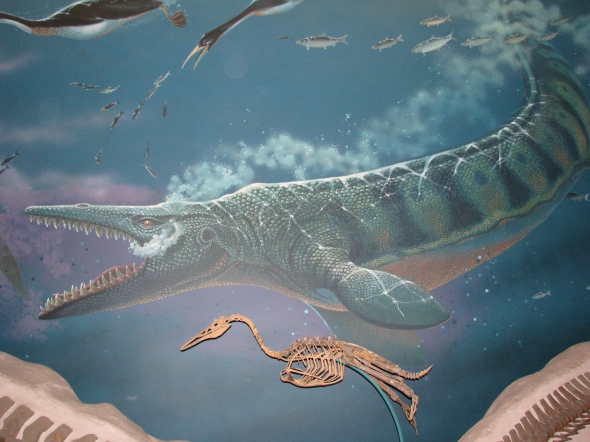 A beautiful painting of a mosasaur with a diving bird skeleton on display.