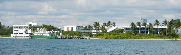 A view from the water of the University of Miami' Rosenstiel School of Marine & Atmospheric Science campus on Virginia Key.