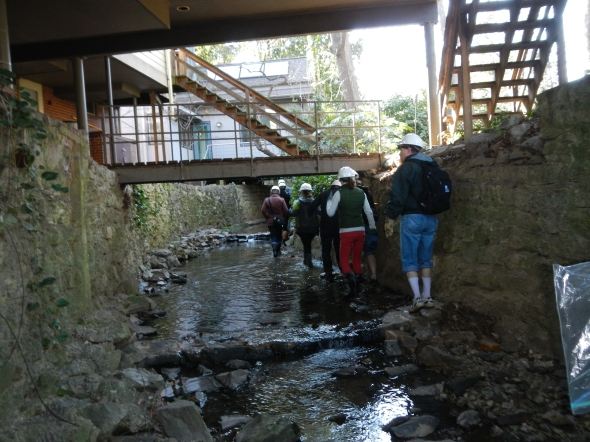 We also walked through some above-ground stormwater structures that manage the run-off.