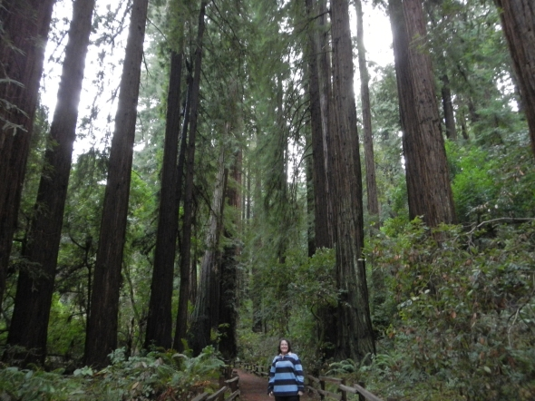 That's me, at Muir Woods National Monument!