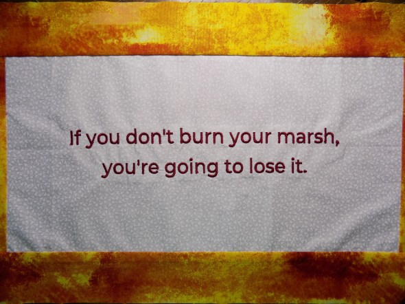 Phrase, if you don't burn your marsh, you're going to lose it